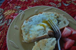 Egg in Toast (aka Egg in a Nest)
