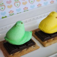 Peeps on smores